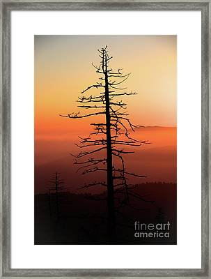 Framed Print featuring the photograph Clingman's Dome Sunrise by Douglas Stucky