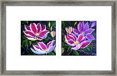 Cllementis Framed Print by Janet Silkoff