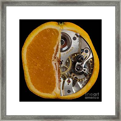 Framed Print featuring the photograph Clockwork Orange by Brian Roscorla