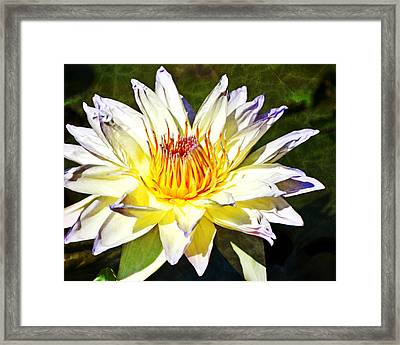 Close Encounters 8x10 Framed Print by Marty Koch