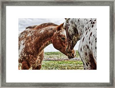 Close Friends Framed Print