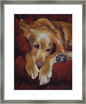 Close To Dreamland Framed Print by Billie Colson