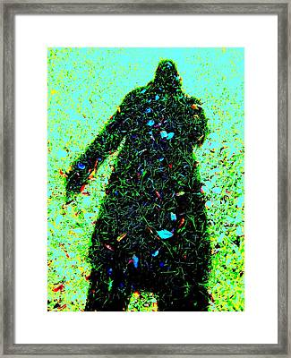 Close To Earth Framed Print by Shirley Sirois