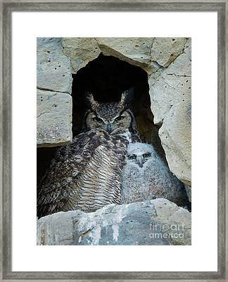 Close To Mom Framed Print by Mike Dawson