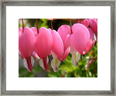 Close To My Heart Framed Print by Jennifer Compton