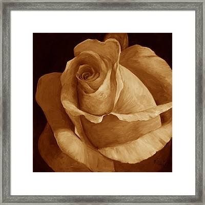Close To Perfection Sepia Framed Print by Billie Colson