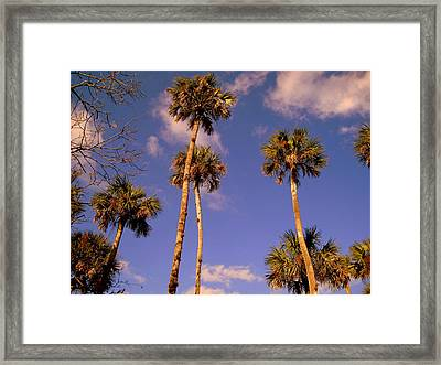 Close To The Clouds Framed Print by Susanne Van Hulst