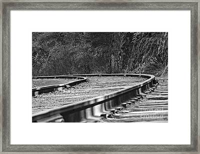 Close To The Ground Framed Print by Cendrine Marrouat