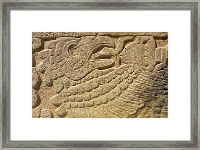 Close-up Of A Mayan Framed Print by Raul Touzon