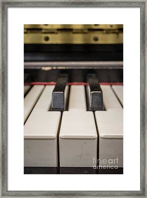 Close Up Of Keys On A Piano Framed Print