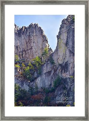 Close-up Of Seneca Rocks Top Edge Framed Print