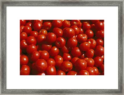 Close-up Of Tomatoes At A Market Framed Print by Todd Gipstein
