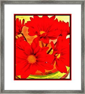 Close Up Red Gerbers Framed Print by Marsha Heiken