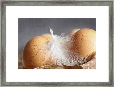Closeup Of Brown Speckled Eggs  Framed Print by Sandra Cunningham