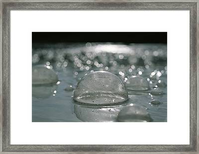 Closeup Of Gaseous Bubbles In A Hot Framed Print by Carsten Peter