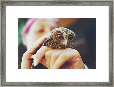 Closeup Portrait Of A Girl Holding And Tending A Small Baby Owl In Her Hands Framed Print