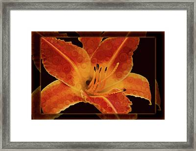 Closeup Wth A Vibrant Orange Lily Abstract Flower Framed Print by Omaste Witkowski
