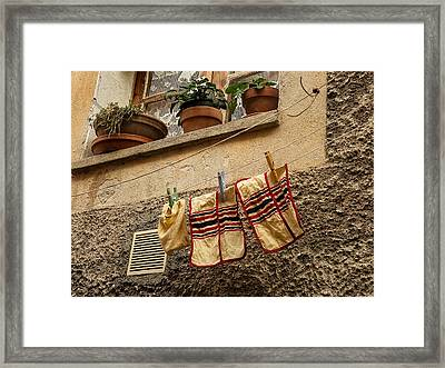 Clothesline In Biot Framed Print