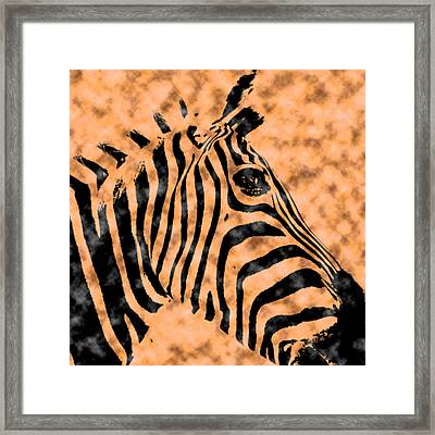 Cloud Face Zebra Framed Print
