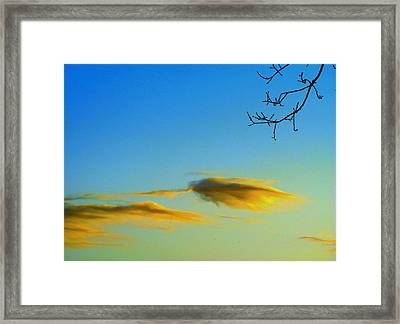 Cloud Heron Framed Print