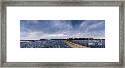 Cloud Vortex Over Bluebonnets At Muleshoe Bend Recreation Area - Spicewood Texas Hill Country Framed Print