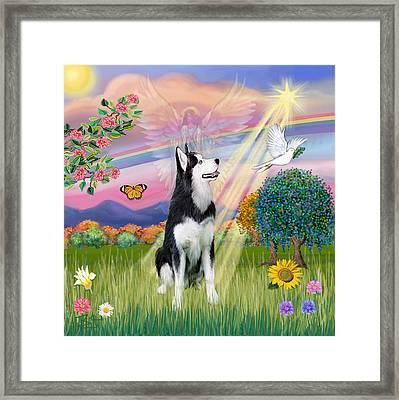 Cloudangel #1 - Siberian Husky Framed Print