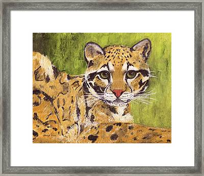 Framed Print featuring the painting Clouded Cat by Jamie Frier
