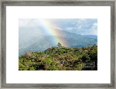 Cloudforest Rainbow Framed Print