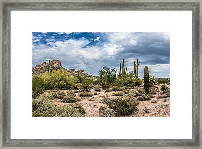 Clouds And Cacti Framed Print