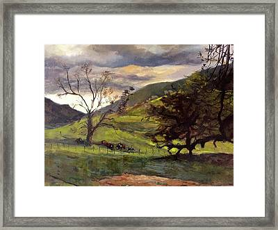 Clouds And Cattle Framed Print