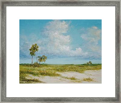 Clouds And Palms By Alan Zawacki Framed Print