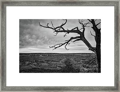 Clouds And The Canyon Framed Print