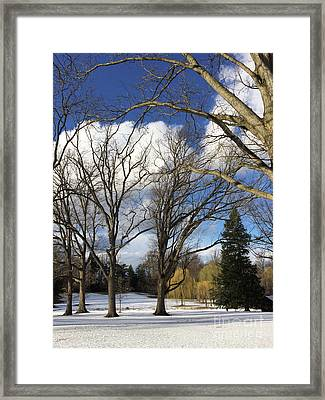 Clouds For Leaves Snow For Grass Framed Print