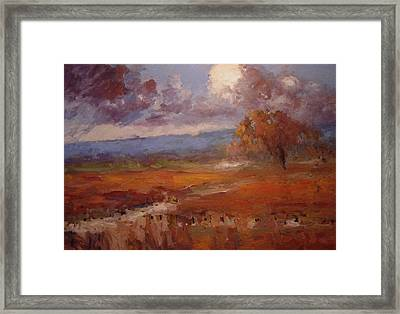 Clouds Over The Vineyard Framed Print by R W Goetting