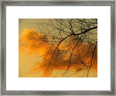 Cloudy Silhouette Framed Print by Dottie Dees