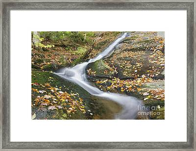 Clough Mine Brook - Kinsman Notch New Hampshire Framed Print by Erin Paul Donovan