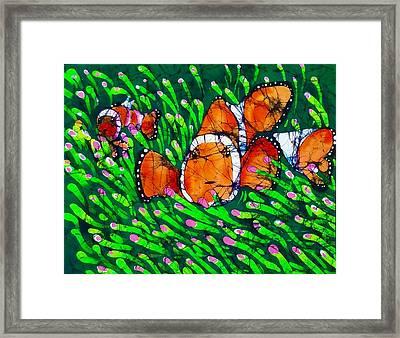 Clownfish II Framed Print