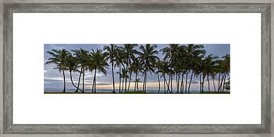 Cluster On Kauai Framed Print by Jon Glaser