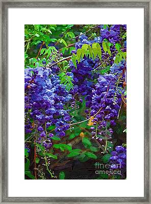 Framed Print featuring the photograph Clusters Of Wisteria by Donna Bentley