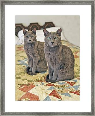 Clyde And Bonnie Framed Print by James Steele