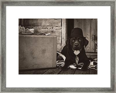 Clyde Framed Print by Heather Applegate