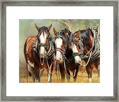 Clydesdale Conversation Framed Print by Trudi Simmonds