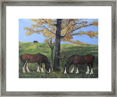 Clydesdale Feeding Framed Print