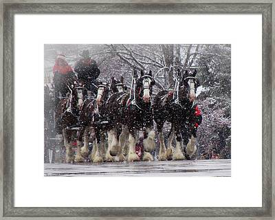 Clydesdale Hitch Framed Print by Nancy Bairnsfather