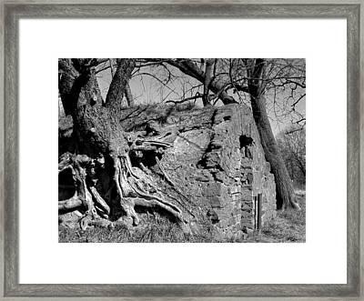 Cmn-parkxx11 Framed Print by Curtis J Neeley Jr