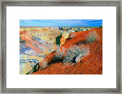 Coal Mine Canyon Framed Print