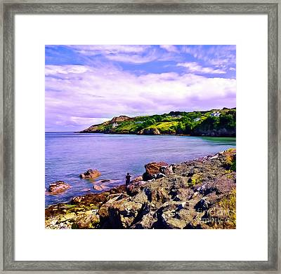 Rocky Coast At Howth Framed Print
