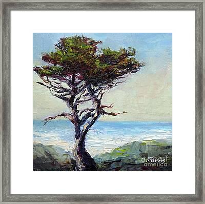 Coast Cypress Framed Print