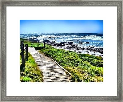 Framed Print featuring the photograph Coast Trail At Pebble Beach by Kathy Tarochione