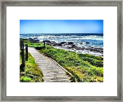 Coast Trail At Pebble Beach Framed Print by Kathy Tarochione